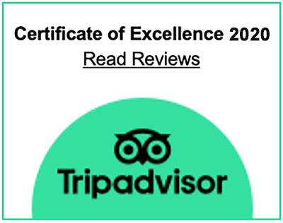 Trip Advisor Certificate of Excellence 2020